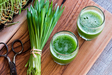 Two shots of barley grass juice with freshly harvested barley grass, top view Stock Photo