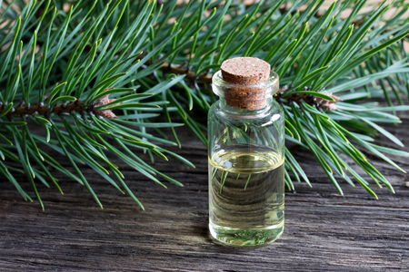 A transparent bottle of pine essential oil with pine branches in the background