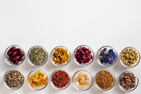 Selection of herbs on white background with copy space - dried rose hips, horsetail, mullein, rose petals, cornflower, chamomile, milk thistle, calendula, sandalwood, frankincense resin, fenugreek, oak bark Stock Photo