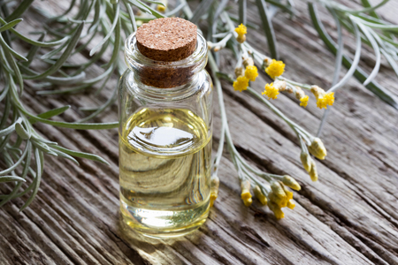 A bottle of helichrysum italicum essential oil with fresh helichrysum twigs on a wooden background