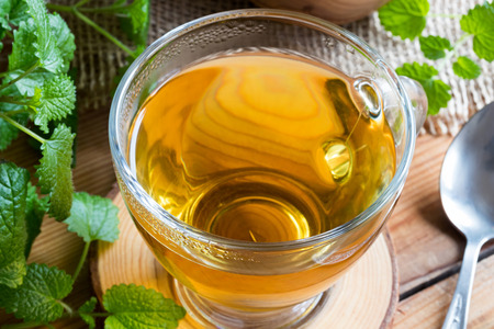 Closeup of cup of melissa (lemon balm) tea on a table with fresh melissa leaves in the background