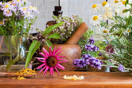 Echinacea, lavender, chamomile, yarrow, creeping thyme, dried calendula and other herbs on a wooden table