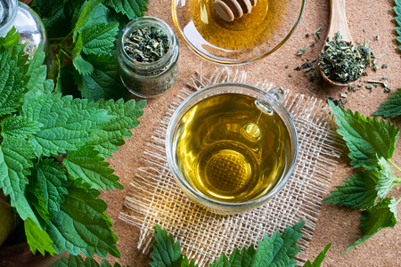 A cup of nettle tea with fresh and dried stinging nettles, top view Stock Photo