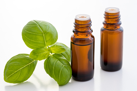 Two bottles of basil essential oil with fresh basil leaves on a white background Stock Photo