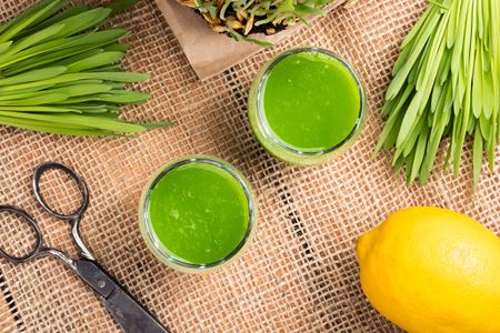 Two glasses of barley grass juice with lemon and freshly grown barley grass, top view