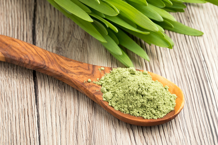 Green barley grass powder on a spoon with fresh young barley grass Reklamní fotografie