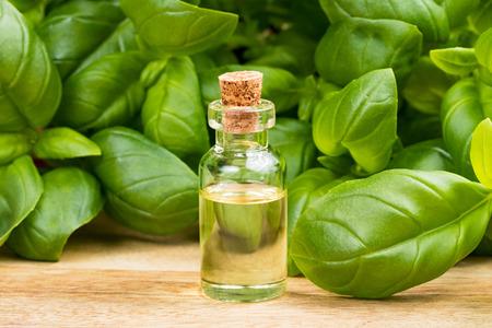 A transparent bottle of basil essential oil with fresh basil leaves Banco de Imagens