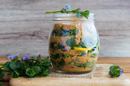A glass jar filled with ground-ivy leaves and flowers, lemon and coconut sugar, to prepare homemade herbal syrup