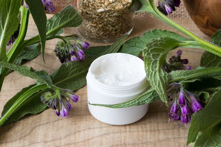 A jar of comfrey cream with fresh symphytum officinale plant