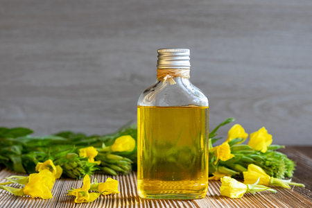 Evening primrose oil and fresh blooming plant