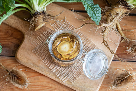 Preparation of alcohol tincture from wild teasel root - a folk remedy for lyme disease Stock Photo