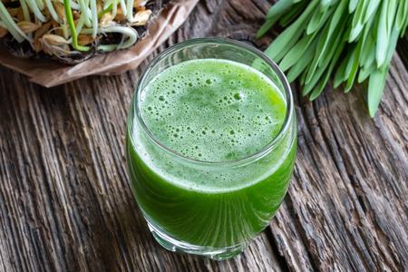 A glass of barley grass juice with fresh plant Imagens