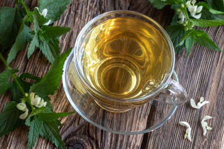 A cup of white dead-nettle tea with fresh blooming plant on a table Stok Fotoğraf
