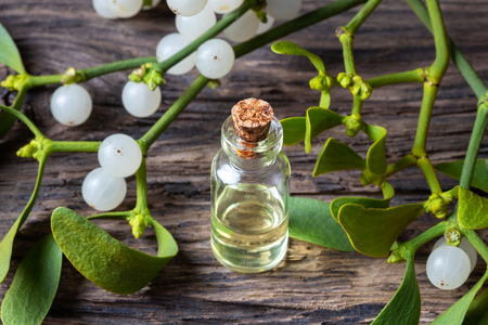 A bottle of essential oil with fresh mistletoe twigs Banque d'images