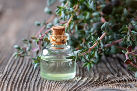A bottle of essential oil with fresh thyme twigs Imagens
