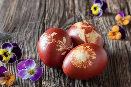 Easter eggs dyed with onion peels with a pattern of fresh herbs with colorful pansy flowers