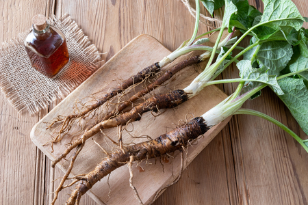 Fresh burdock roots and tincture on a table Archivio Fotografico