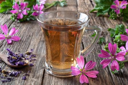 Eine Tasse Malventee mit frisch blühender Malva sylvestris-Pflanze im Hintergrund