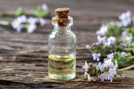 A bottle of essential oil with fresh blooming thyme twigs