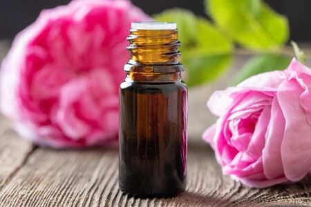 A bottle of essential oil with fresh rose de mai flowers Banco de Imagens