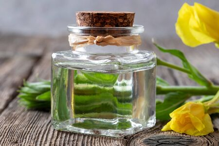 A bottle of evening primrose oil with fresh blooming plant on a table Reklamní fotografie