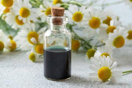 Butelka granatowego olejku eterycznego z rumianku niemieckiego i świeże kwiaty na jasnym tle