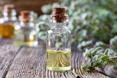 A bottle of essential oil with fresh marjoram twigs on a wooden background