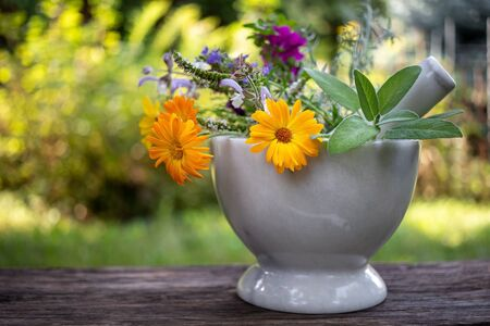 Calendula, sage, hyssop and other medicinal herbs in a marble mortar in a garden