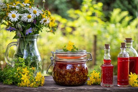 Jars and bottles of red oil made from St. John's wort flowers, with fresh plant