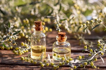 Bottles of essential oil with fresh blooming wormwood plant, outdoors