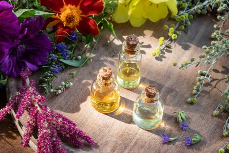 Three bottles of essential oil with fresh wormwood, hyssop, Tagetes patula and other herbs and flowers