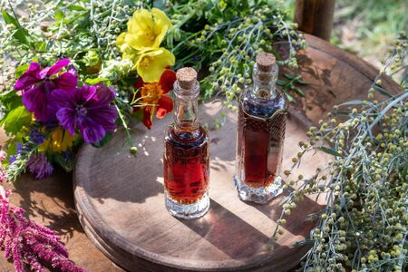 Two bottles of herbal tincture with fresh wormwood, mallow, mullein and other herbs Stock Photo