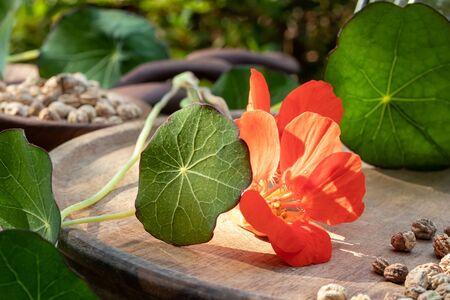 Fresh nasturtium flowers, leaves and seeds