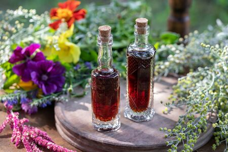 Bottles of herbal tincture with fresh wormwood, mallow, amaranthus caudatus and other herbs