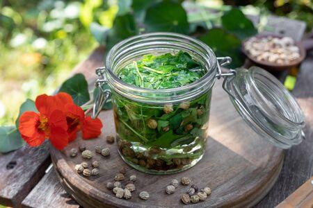 Preparation of herbal tincture from fresh nasturtium or Tropaeolum majus leaves, seeds and flowers Stok Fotoğraf