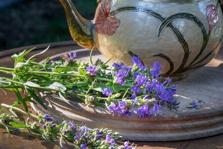 Fresh hyssop flowers on a table, with a teapot in the background, outdoors