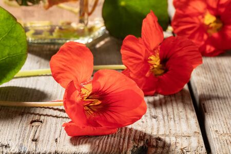 Fresh nasturtium flowers, with a bottle of tincture in the background