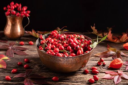 Still life with rose hips and red autumn leaves 版權商用圖片