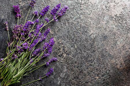 Fresh lavender twigs on a dark background with copy space 版權商用圖片