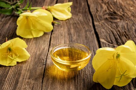 Evening primrose oil and fresh blooming plant on a rustic background 版權商用圖片