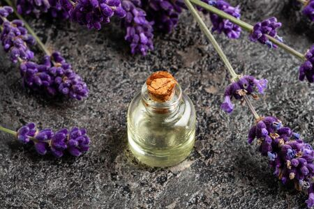 A bottle of essential oil with fresh blooming lavender on a dark background