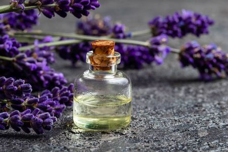 A bottle of essential oil with fresh lavender flowers