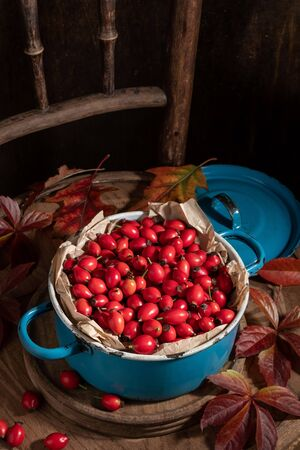 Fresh rose hips in a blue pot on a vintage chair, with autumn leaves Banque d'images - 132119162