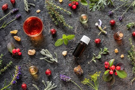 Bottles of essential oil with frankincense, dried rose hips, wintergreen, hyssop and other herbs on a dark background Zdjęcie Seryjne