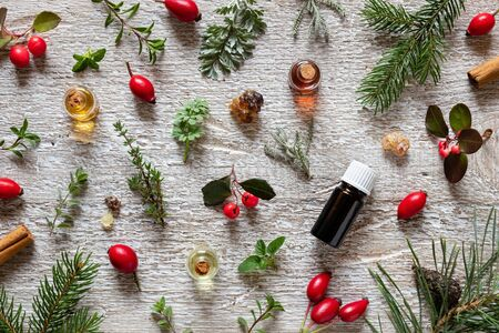 Selection of essential oil with frankincense, wintergreen,  rose hips, thyme and other herbs on a white wooden background Zdjęcie Seryjne