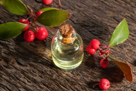 A small bottle of essential oil with fresh wintergreen leaves and berries