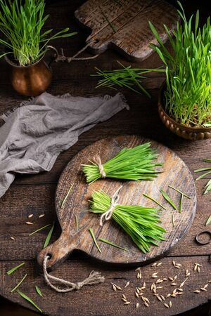 Homegrown barley grass on a rustic wooden table