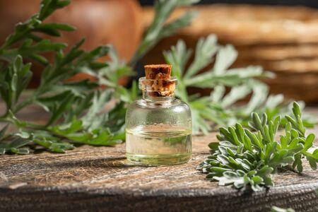 A bottle of wormwood essential oil with fresh Artemisia Absinthium plant Stock fotó
