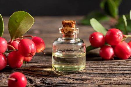 A bottle of essential oil with wintergreen berries and leaves