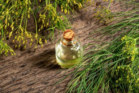 A bottle of dill seed oil with fresh plant